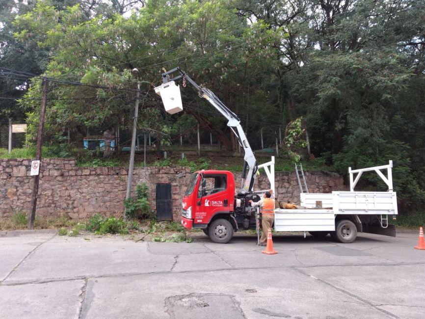 El viernes próximo se realizará un Taller de Poda en el Centro Cívico