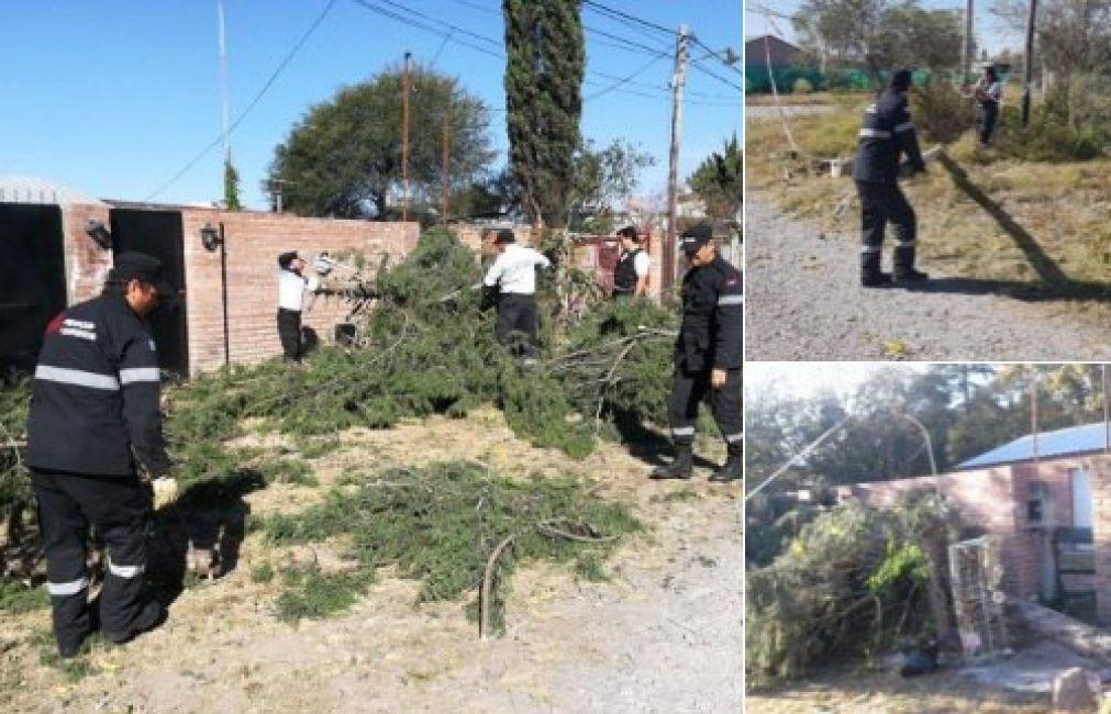En San Luis profundizan la limpieza tras los intensos vientos en Salta