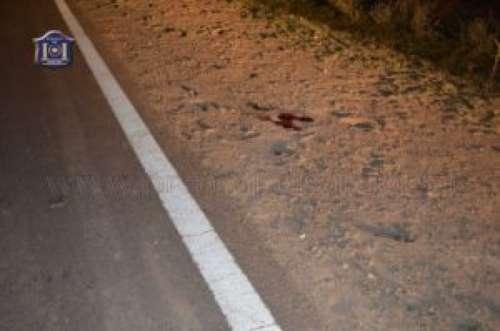 Investigan la muerte de un jinete en siniestro vial