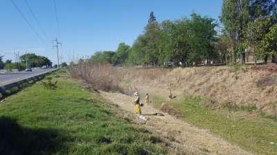 Antes de la llegada de las lluvias comenzó la limpieza del canal Oeste