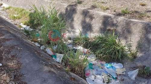 Comenzó la limpieza del canal Roberto Romero de zona Sur
