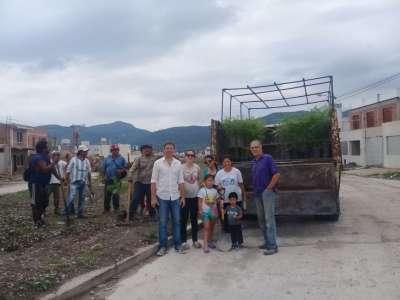 """""""Reverdece tu ciudad"""": se plantaron 100 árboles en barrio Pereyra Rozas"""