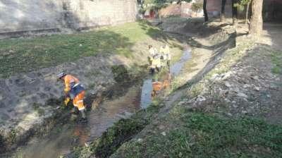 Mantenimiento de espacios verdes, calles y canales