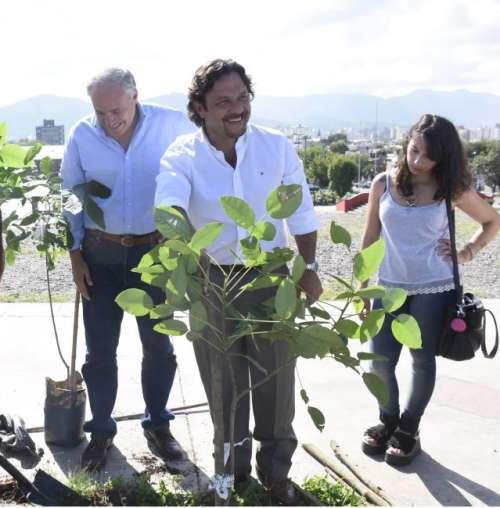 """Sáenz: """"Continuamos forestando la ciudad pensando en las generaciones futuras"""""""